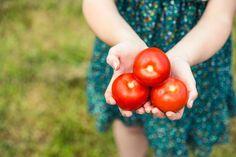¿Cómo elegir alimentos saludables? 6 tips útiles y efectivos. www.farmaciafrancesa.com