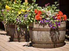 pots de fleurs authentiques en vieux tonneaux en bois
