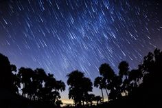 Deborah Sandidge: Star Trails over Merritt Island NWR Our Lady Of Medjugorje, Merritt Island, Star Trails, Photography Gear, Exposure Photography, Photo Tips, Mystic, Cool Pictures, Northern Lights