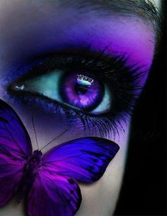 Purple & blue eye & butterfly. This is one of my most favorite photos. <3
