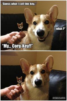 get it a Corg-Key!
