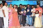 Seethamma Andalu Ramayya Chitralu Audio Released