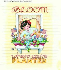 Bloom where you're planted.....