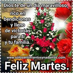 Dios te de un día maravilloso, rico en bendiciones y lleno de victorias para ti y tu familia. Happy Tuesday, Happy Day, Prayers, Blessed, Quotes, Xmas, Quotations, Prayer, Beans