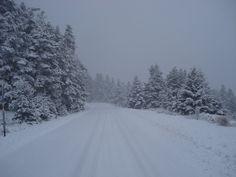 Χιόνισε στον Παρνασσό-Δείτε εντυπωσιακές φωτογραφίες - ΡΟΥΜΕΛΗ - ΣΤΕΡΕΑ ΕΛΛΑΔΑ