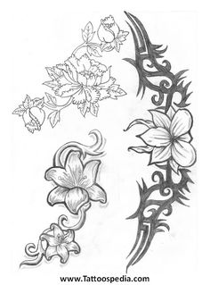 Tribal Flower Tattoo Drawings Tribal and flower tattoos Jasmine Flower Tattoos, Hawaiian Flower Tattoos, Tribal Flower Tattoos, Flower Tattoo On Side, Flower Tattoo Shoulder, Jasmine Tattoo, Flower Tattoo Stencils, Flower Tattoo Drawings, Tattoo Sketches