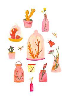 Plante illustration