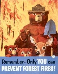 "Smokey says, ""Only you can prevent forest fires!"" Now more than ever.  Be vigilant!"