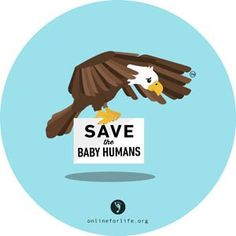 Eagle: OFL Sticker – Online for Life Life Is Precious, Human Human, Life Is A Gift, Human Babies, Choose Life, Stickers Online, Pro Life, Vulnerability, Eagle