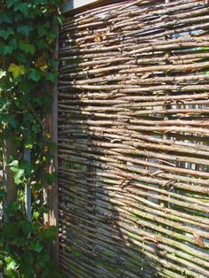 wattle screen