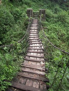 ... but better hurry before the jungle takes over.    Another bridge to cross in Nepal by Kate and Clint