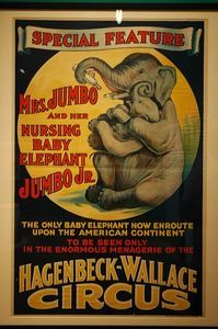 While Hagenbeck-Wallace never had an elephant named Jumbo, the entire mother/baby idea was a huge draw. Cirque Vintage, Vintage Carnival, Vintage Advertisements, Vintage Ads, Old Circus, Circus Art, Vintage Circus Posters, Carnival Posters, Maurice Careme
