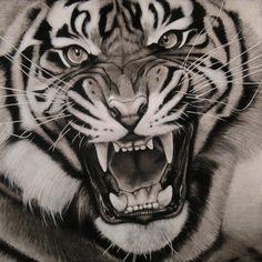 asunder by burnt-sticks Tiger drawing #AnimalArt #Tiger #Art
