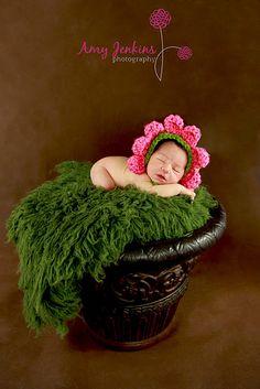 www.amyjenkinsphotography.com