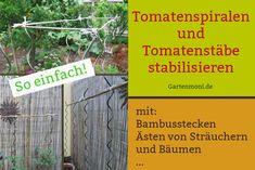 Damit Tomatenspiralen und -stäbe noch fester stehen und Deinen Tomatenpflanzen optimalen halt bieten, kannst Du sie ganz einfach zusätzlich stabilisieren