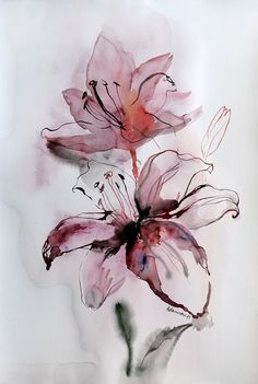 Original Water color Painting - Pink Lily. Floral wall art for hotel room or home. Unique present for wedding. Watercolour flower picture. by AlisaAdamsoneArt on Etsy https://www.etsy.com/listing/208581582/original-water-color-painting-pink-lily