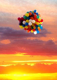 Freedom comes to this beautiful bunch of balloons just in time for this gorgeous sunset!
