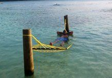 Chillin' In The Water Hammock.