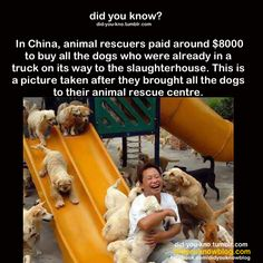 Did U Know ? this makes me so happy..