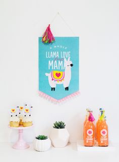 Llama Party Ideas -