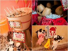 """Farm/Country themed party.. Sooo cute! love the """"chicken feed"""" lol"""