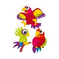 Renkli Papağanlar Çocuk Odası Duvar Sticker http://www.stickerdepo.com/