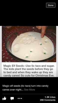 Such a cute idea. have Elf on the shelf bring the 'seeds' then the kids can plant them and then the next morning there's candy canes :)
