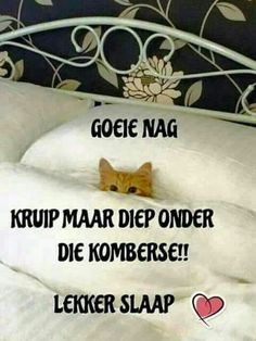 Lekker Dag, Goeie Nag, Afrikaans Quotes, Good Night Sweet Dreams, Good Night Quotes, Inspirational Quotes, Faith, Songs, Inspire Quotes
