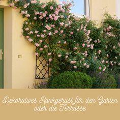 Im Hochbeet und im Gemüsegarten hat ein Rankgerüst häufig nur einen Zweck zu erfüllen: Das Rankgerüst soll praktisch sein und Himbeeren oder Bohnen Halt bieten. Im Blumenbeet und auf der Terrasse hingegen stellt der anspruchsvolle Gärtner weit mehr Ansprüche an ein Rankgerüst. Es soll dekorativ sein, sich stilvoll in das Anwesen einbinden und der Kletterpflanze zu üppigem Wachstum und einer opulenten Blütenpracht verhelfen.  #MetallRankgitter #Balkongestaltung #Garten #Terrassengestaltung Parks, Classic Garden, To Go, Climbing Vines, Backyard Patio, Balcony, Raspberries, Metal, Parkas