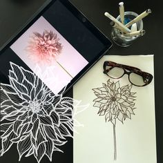 Day 11 #30ideas30days #illustration #flowers #blackandwhite #drawing #patternly.design #30ideias30dias #ilustração #flores #pretoebranco #desenhoobservacao #decolalab2016 #oficinaamandamol