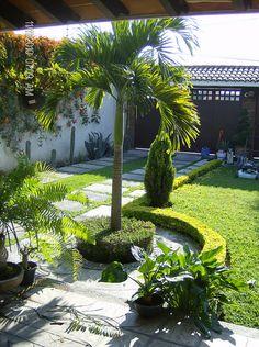 jardineria pastrana diseño construccion y mantenimiento de jardines. CEL (735)138 8410