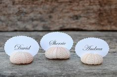 Pink Sea Urchin Place Card Name Holders - 10 - Beach Wedding Reception Table Chic Decor - Guest Escort Card Favor Sea Shell via Etsy