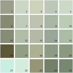 Gray Green Paint light sage | favorite color, olympics and lights