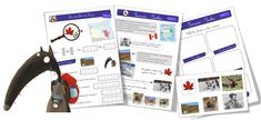 Marketplace Store Latina Canada Everything You Need Found Here. French Teaching Resources, Teaching French, Album Jeunesse, Core French, Religious Studies, French Teacher, French Immersion, Canada, Learn French