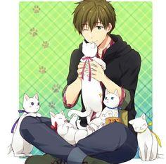 Makoto | Free! #anime