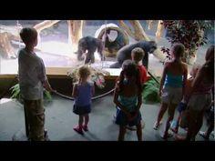 What Darwin Never Knew (NOVA Documentary)