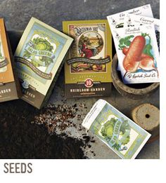 Seeds..... I want to grow fresh food for my family but I'm kinda clueless :/