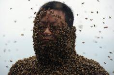 She Ping, um apicultor de 34 anos de idade, é visto durante uma tentativa de cobrir o corpo com abelhas, em Chongqing, na China. Foto: AFP