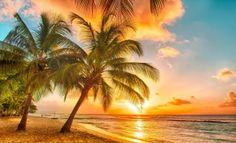 Belle couleur – Cocotiers – Lever du soleil – Lumières – Mer – Plage – Rayon de soleil – Sable blanc