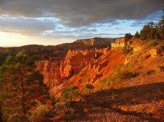 Outside of Bryce Canyon Lodge, Bryce Canyon National Park, Utah