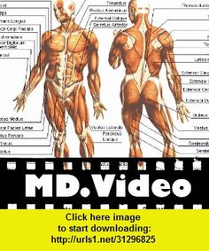 MDVideo: Anatomy & Physiology I, iphone, ipad, ipod touch, itouch, itunes, appstore, torrent, downloads, rapidshare, megaupload, fileserve