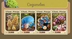 ST16404a Mushrooms (Morchella esculenta; Leratiomyces; Cyathus striatus; Hydnellum peckii)