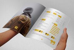 30 formatos para Hoja de Vida (curriculum vitae) gratis @alvarodabril
