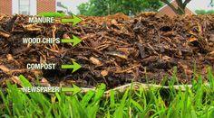 "Gardening Compost ""Back to Eden"" low maintenance, self sustaining garden."