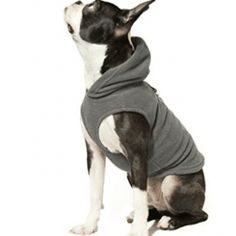 Dog Sweaters, Gooby Every Day Fleece Cold Weather Dog Vest with Hoodie for Small Dogs Dog Fleece, Fleece Vest, Dog Vest, Dog Hoodie, Cold Weather Dogs, Dog Sweaters, Dog Coats, Small Dogs, Best Dogs
