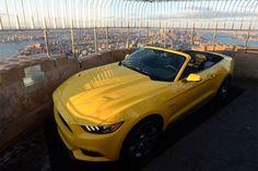 Ford Mustang Mark 6 (2014)<br><br>Para celebrar o aniversário, além da versão limitada, a Ford também montou uma unidade da nova geração do carro no topo do Empire State, um dos maiores arranha-céus da Ilha de Manhattan, na cidade de Nova York (EUA)