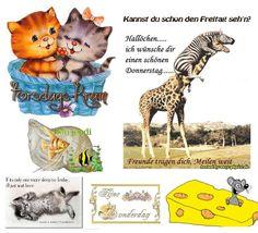 Teddy Bear, Toys, Animals, Thursday, Nice Asses, Activity Toys, Animales, Animaux, Clearance Toys