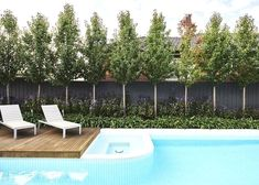 Small and Best Backyard pool landscaping ideas OFTB Melbourne landscaping, pool design & construction project - Modern ceramic tiled swimming pool in contempory styled landscape Privacy Landscaping, Backyard Pool Landscaping, Landscaping Supplies, Garden Pool, Modern Landscaping, Backyard Landscaping, Landscaping Ideas, Privacy Plants, Pool Fence