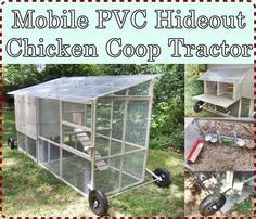 Mobile PVC Hideout Chicken Coop Tractor Homesteading  - The Homestead Survival .Com