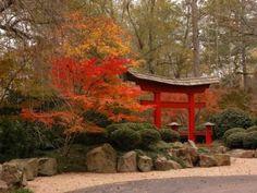 torii Gate in the Fall